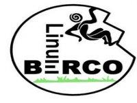 Linum Berco Barranquismo