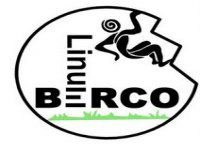 Linum Berco Escalada
