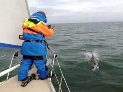 Solway Sailing