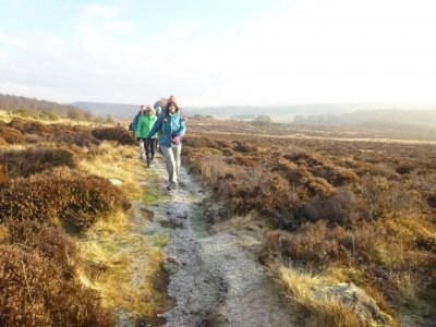Will 4 Adventure Hiking