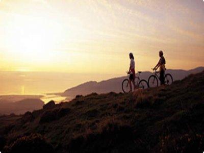 Cinnamon Active Mountain Biking