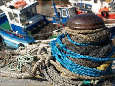Medicalnautic Investigación Pesca