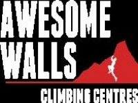Awesome Walls Stockport Abseiling