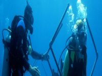 Explore underwater environments scuba diving