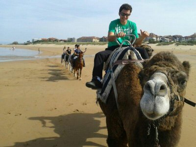 Evecan Safari Aventura Paseos en Camello