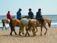Horse Riding Cornwall