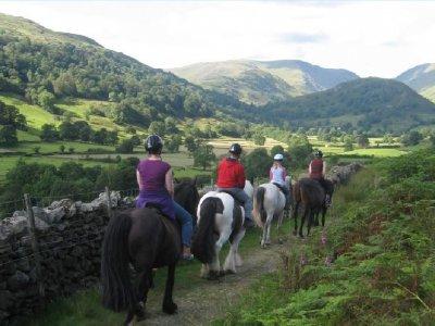 Lakeland Pony Treks