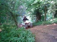 Our woodland terrain