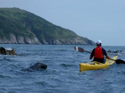 Sea Kayak Devon Canoeing