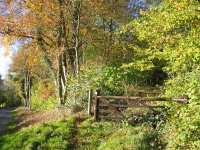 Glyndwr's Way Walking Trail