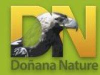 Doñana Nature Rutas 4x4