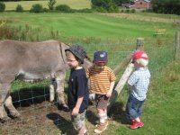 Kids love spending time with our animals