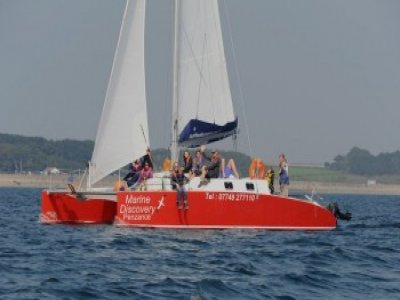 Marine Discovery Penzance Boat Trips