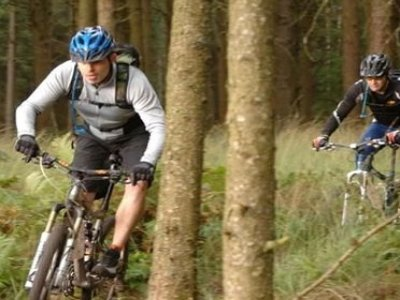 Forest Cycle Hire Mountain Biking