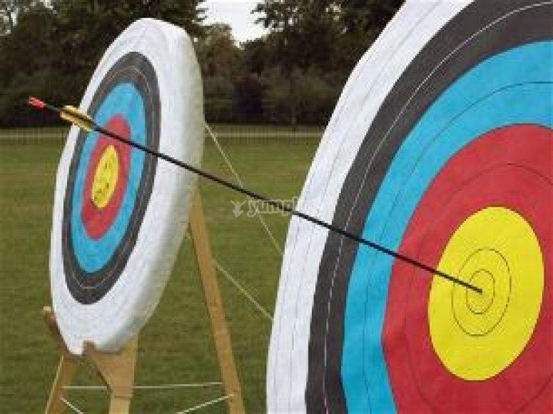 OMG Adventures Archery - Archery