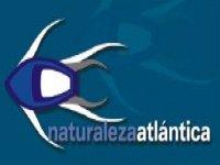 Naturaleza Atlántica Paseos en Barco