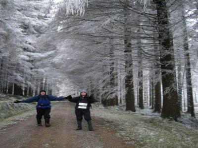 Team Players Hiking