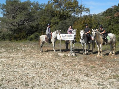Horseback riding tour in Rodonyà, 2 hours.