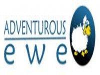 Adventurous Ewe