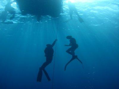 Blue Water Freediving School