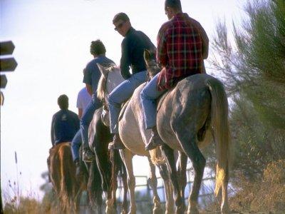 Tour Active Rutas a Caballo