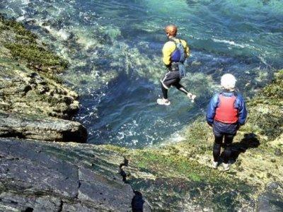 Shaggy Sheep Wales Coasteering