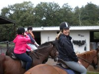 Learn how to ride a horse with us