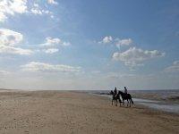 Beach horse riding at Shaggy Sheep Wales