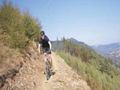 Shaggy Sheep Wales Mountain Biking