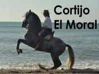 Cortijo El Moral