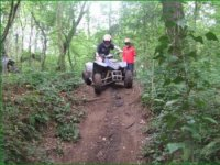 Quad biking in the woods