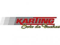 Karting Soto de Dueñas Despedidas de Soltero