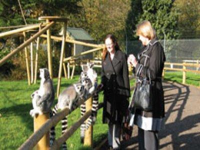 Banham Zoo Zoo