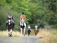 Horse riding in Ruby Country