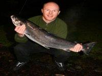 16lb Salmon
