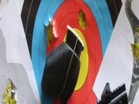 Paintball archery