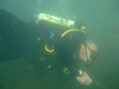 Teign Dive Centre Diving