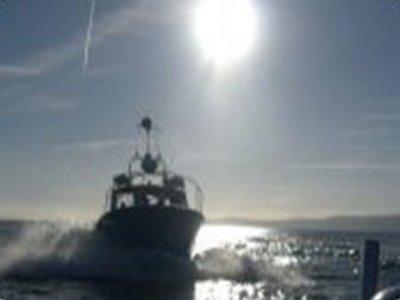 Teign Dive Centre Boat Trips