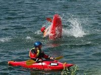 Brilliant kayak stunts!