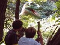 See the dinosaurs!