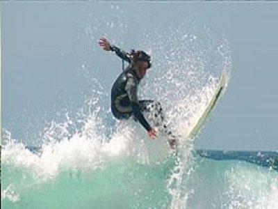 Fforest Surfing
