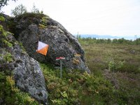 Orienteering days in the beautiful countryside