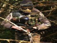 Woodland combat zones