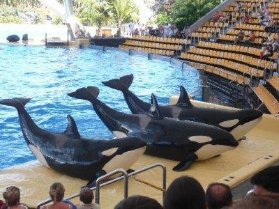 Adrenaline Sport Holidays Parques Zoológicos