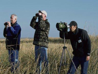 SIS Tours Ornitología