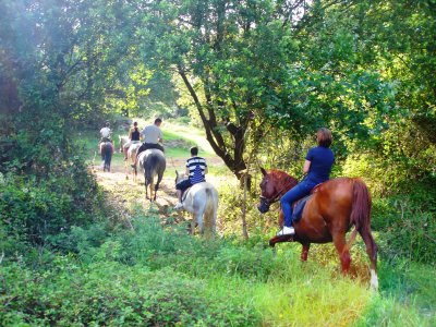 Evecan Safari Aventura Rutas a Caballo