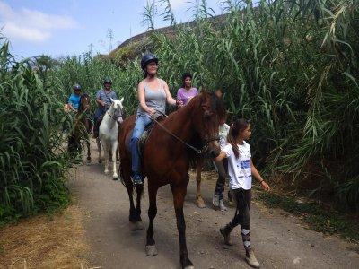 Yukan Outdoor Gran Canaria Rutas a Caballo