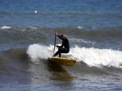 Canary Experience Paddle Surf
