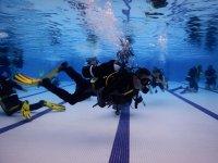 Diving activity in UK