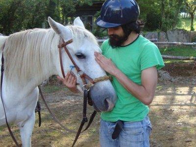10 riding lesson voucher in Sagras